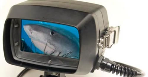 "The ""SHARK"" - Analog SD/HDTV Underwater Monitor"